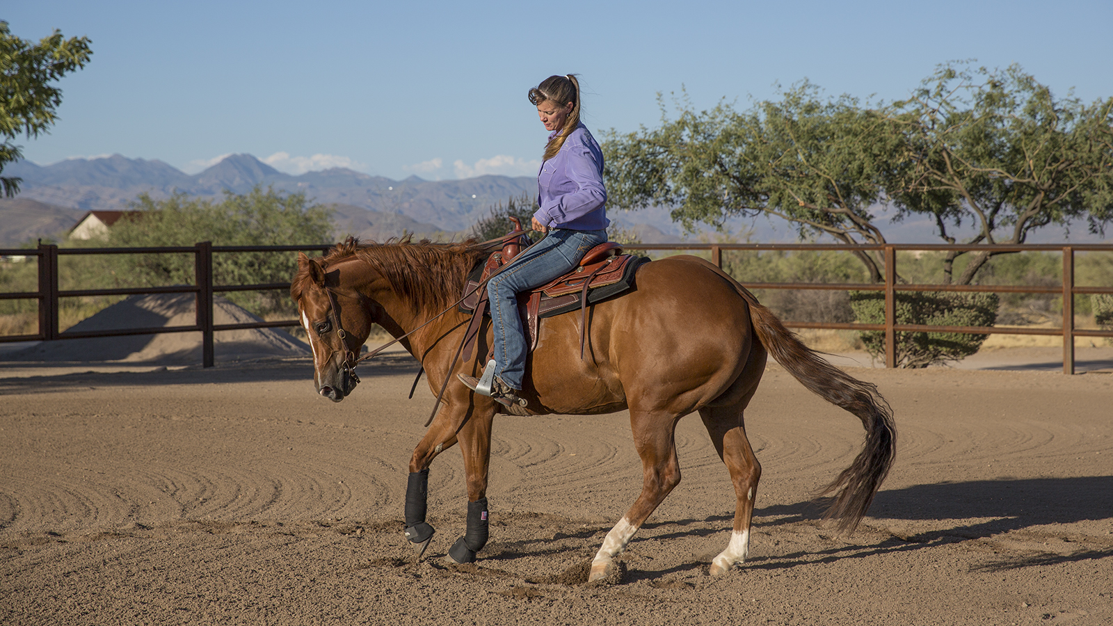 Brandi Lyons remembers a scary equine accident that instilled fear, but eventually taught her better horsemanship and confidence.