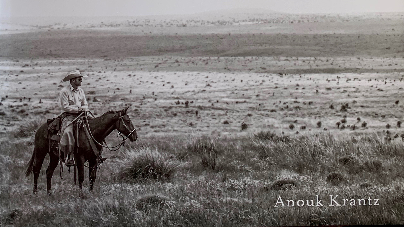 The book West: The American Cowboy features photographs of ranches and rodeos.