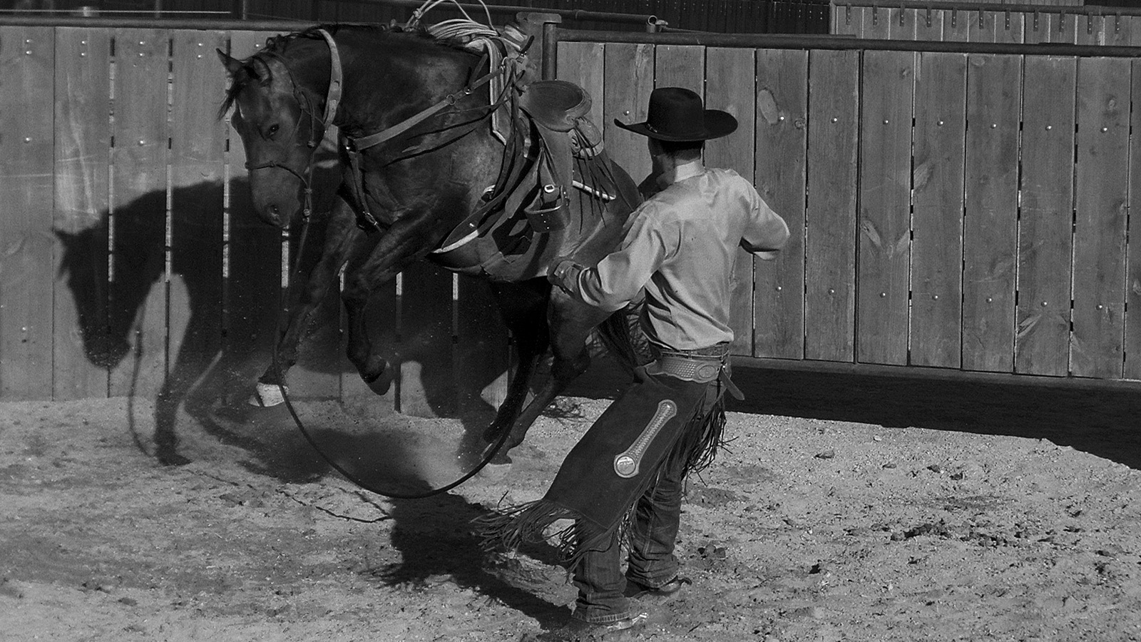 Signs of a tight horse include bucking.