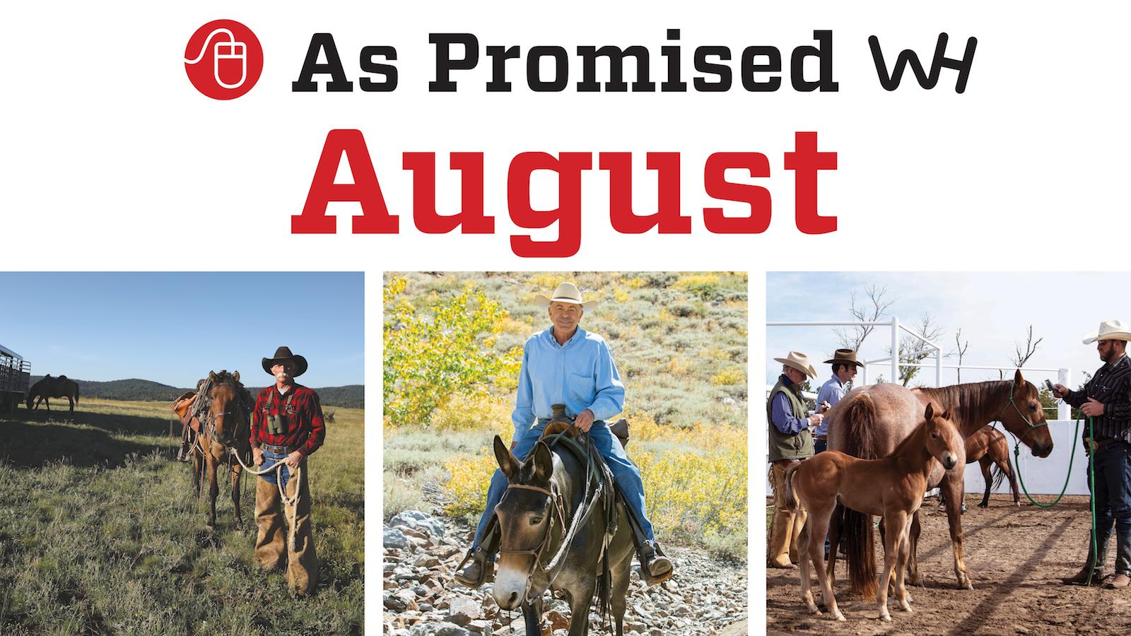 promised content august 2020 western horseman magazine