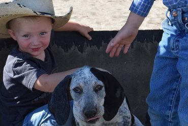 Kids and hound dogs on the ranch