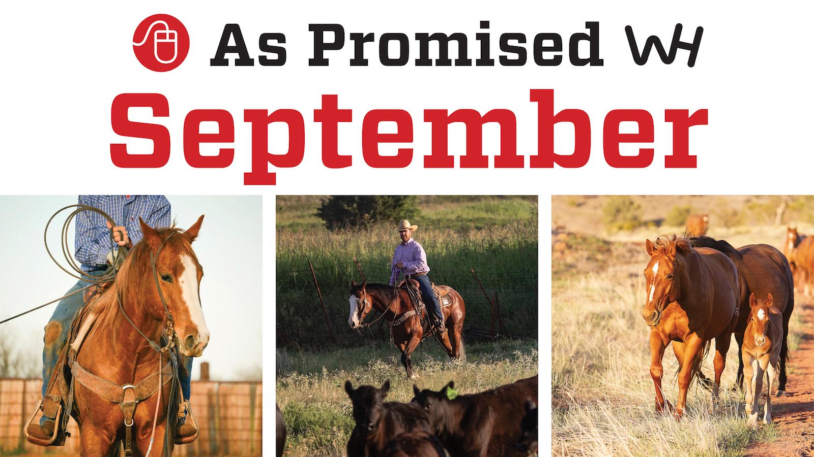 October 2020 western horseman magazine promised content