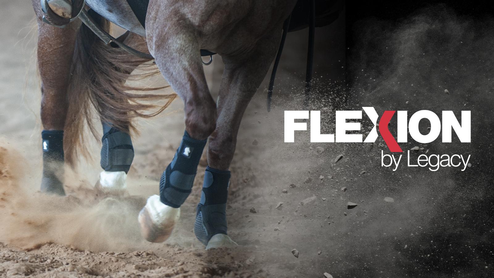 Classic Equine Flexion