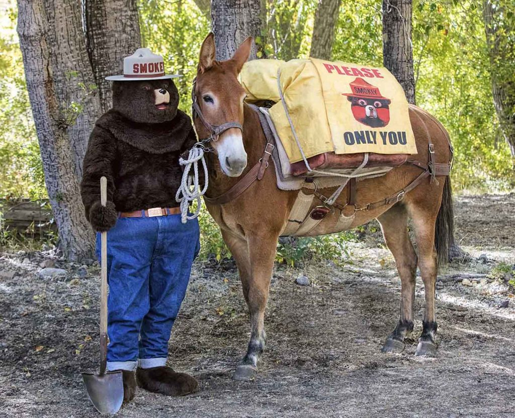 Smokey Bear and a U.S. Forest Service pack mule