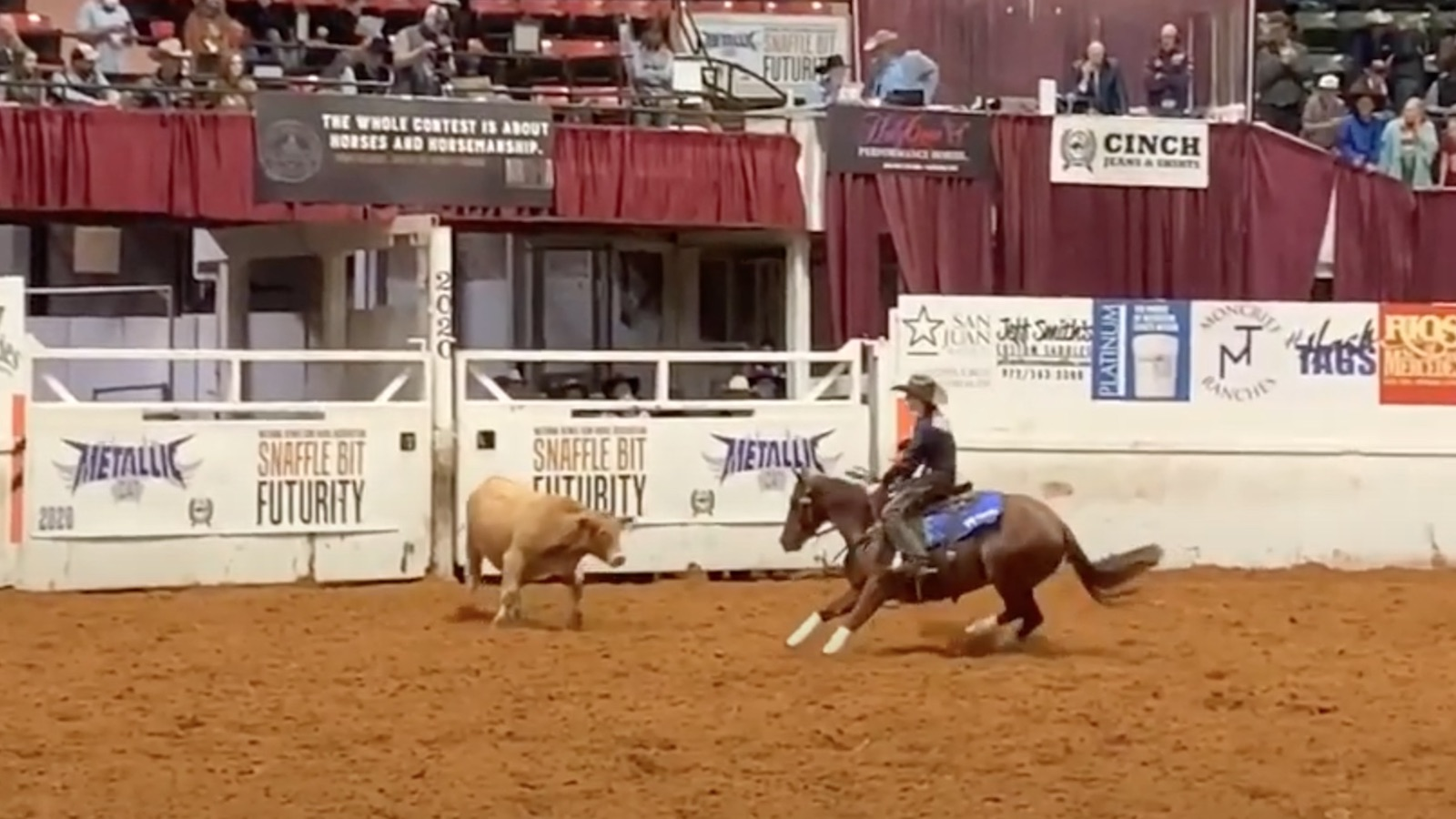 Sarah Dawson competing in the cow work at the Snaffle Bit Futurity