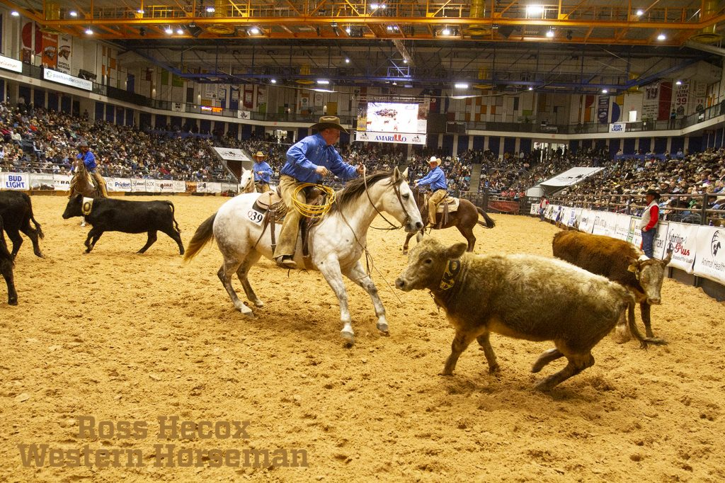 Thompson ranch competes in team penning