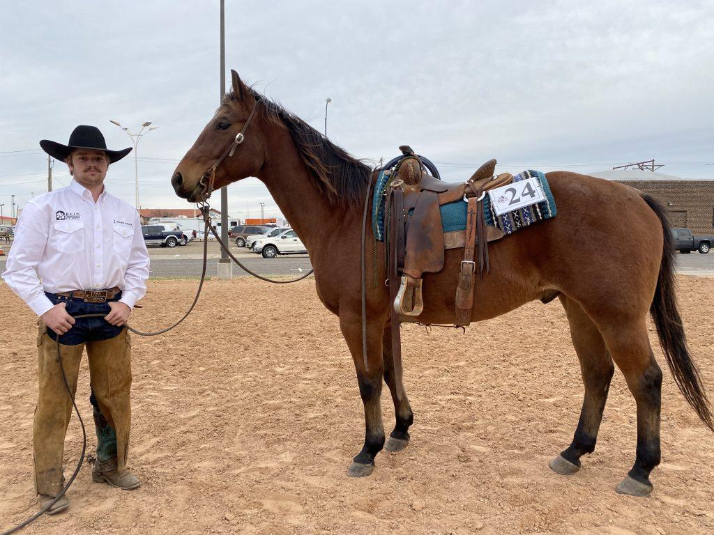 WRCA Top Horse contender Badlands Oak Digger