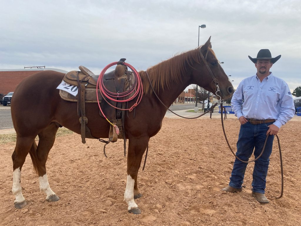 WRCA Top Horse contender Bo