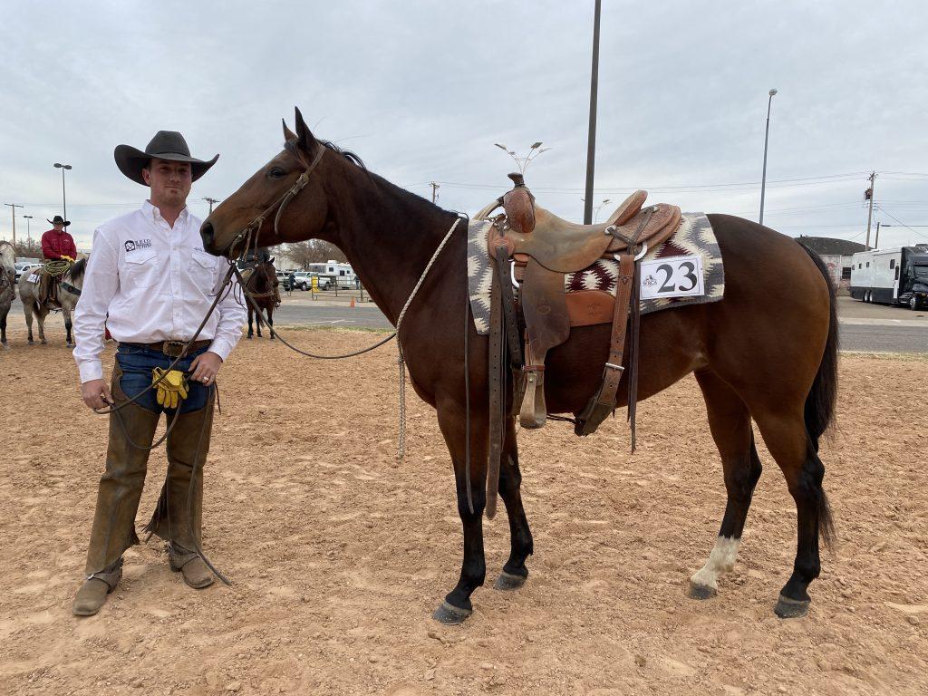 WRCA Top Horse contender Dueces Jet Frost