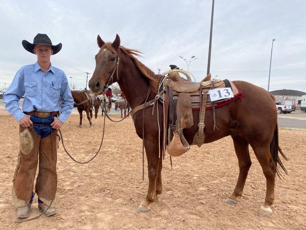 WRCA Top Horse contender Haidaslittleleoto