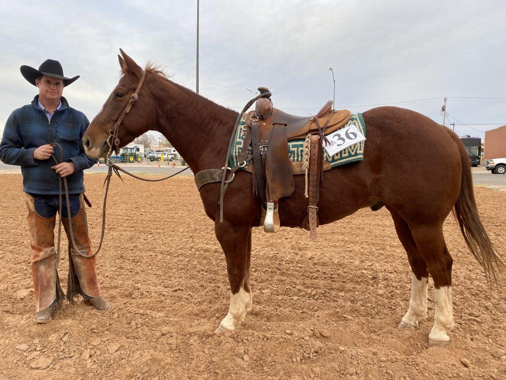 WRCA Top Horse contender Lil Cat Oakley