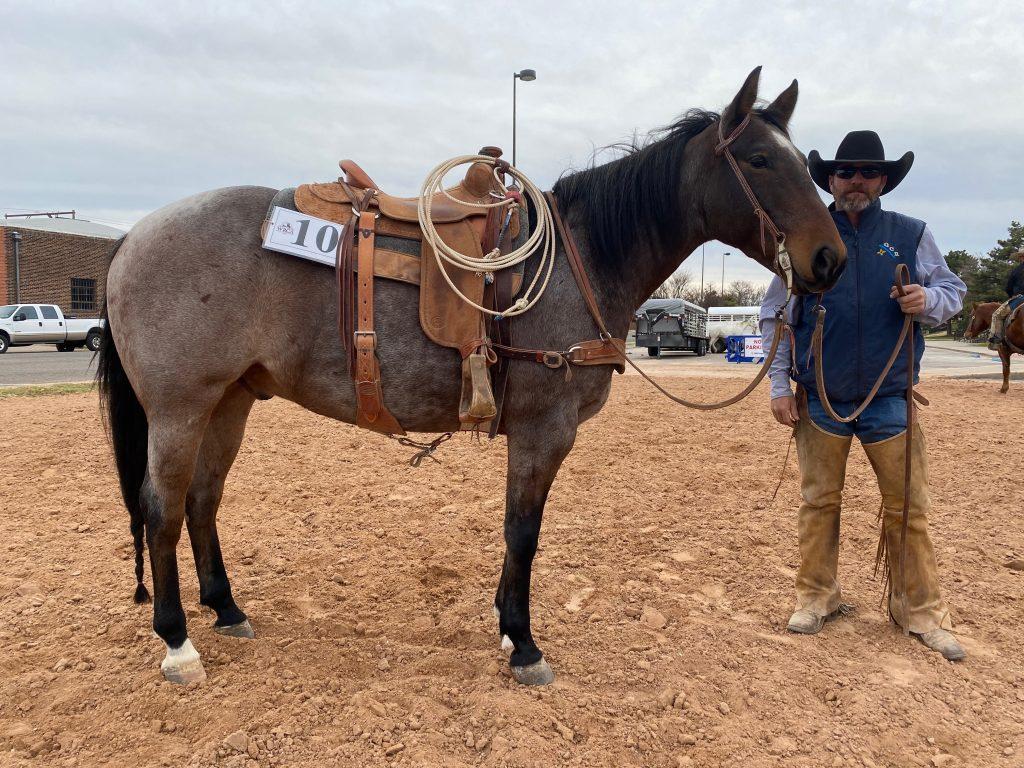 WRCA Top Horse contender Moms Got It Goin On
