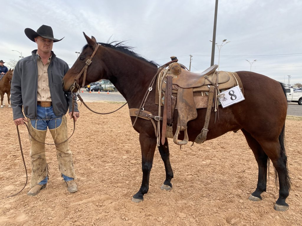 WRCA Top Horse contender Shake It Lucchese