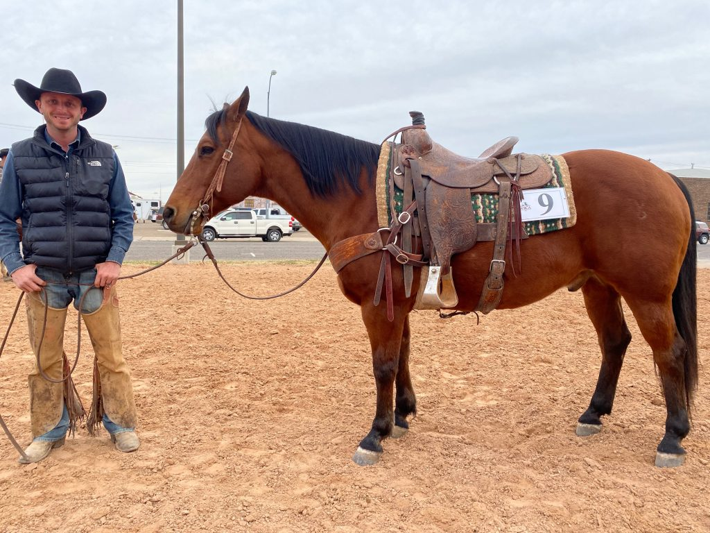 WRCA Top Horse contender Smooth Cat Feathers