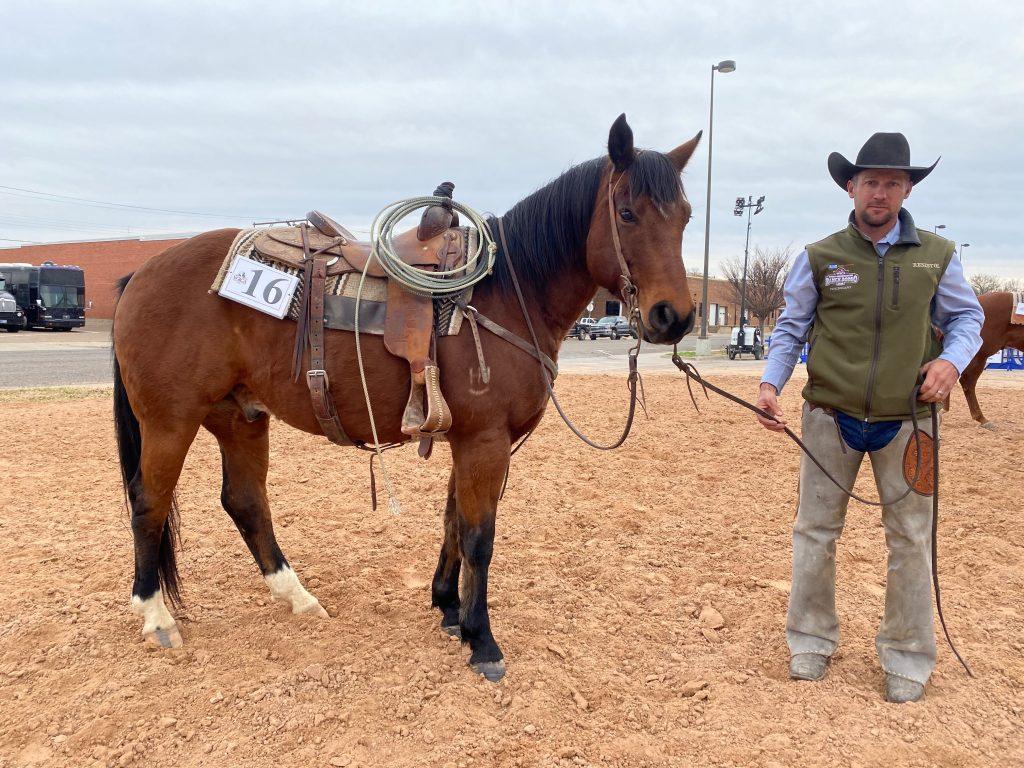 WRCA Top Horse contender Swing My Dues