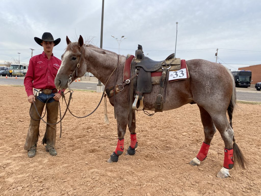 WRCA Top Horse contender Tin Soldier