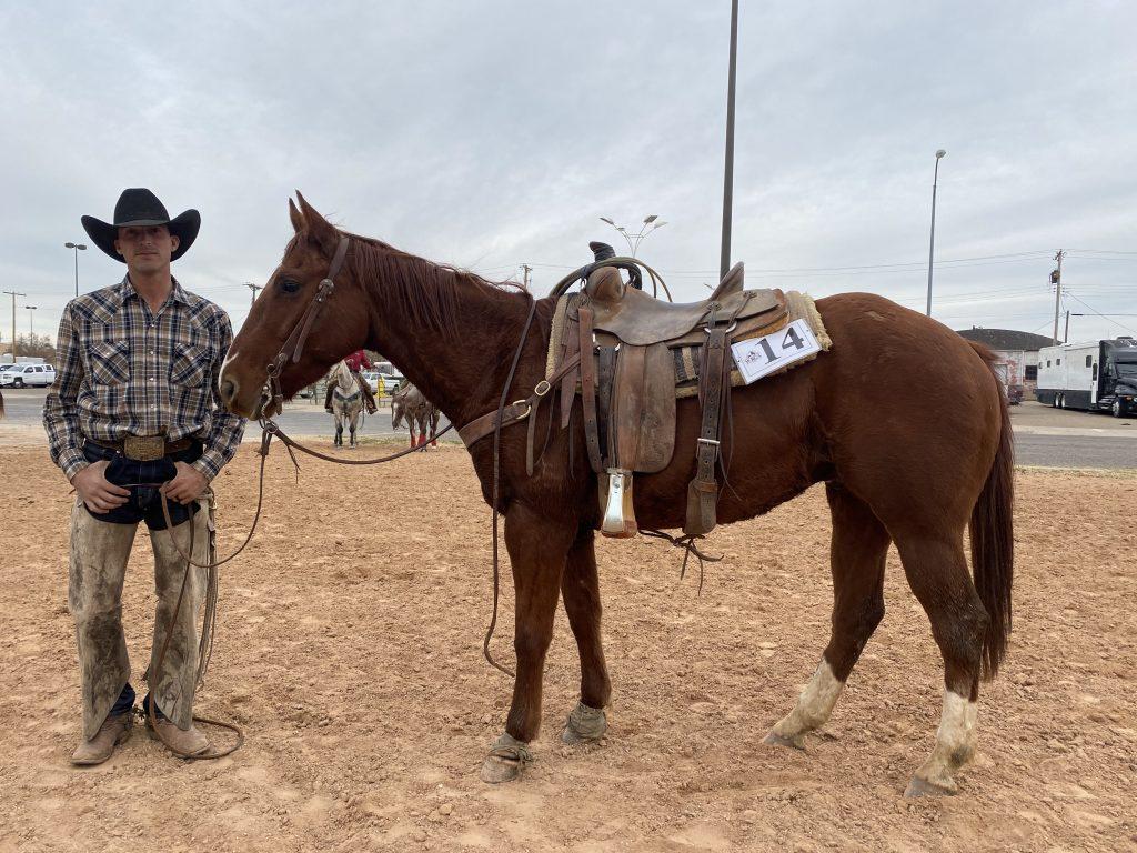 WRCA Top Horse Contender WF Pachuckos Fanny