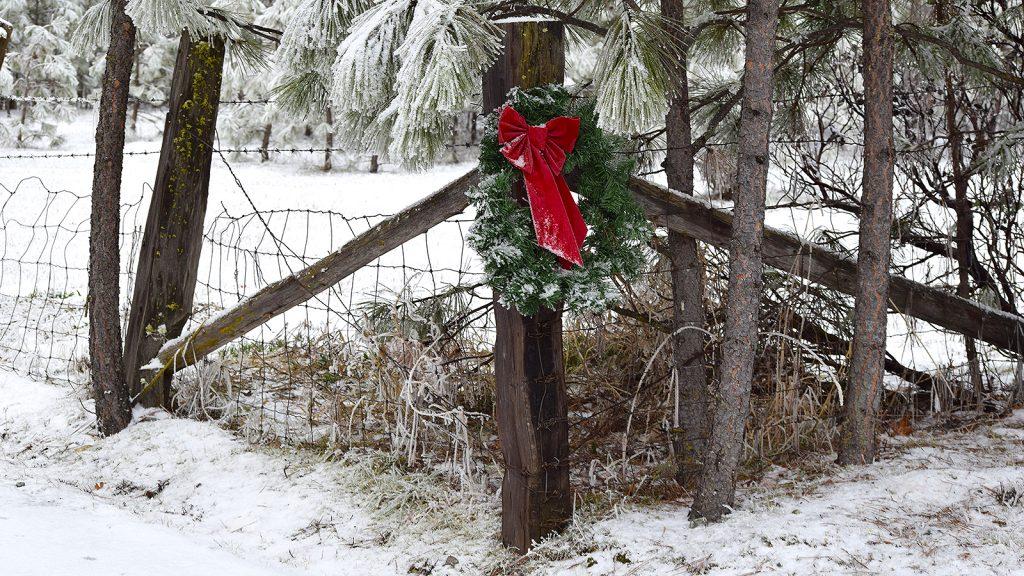 Christmas decorations on the ranch