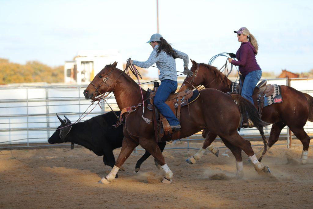 Jackie Crawford and Erin Taormino roping steers.