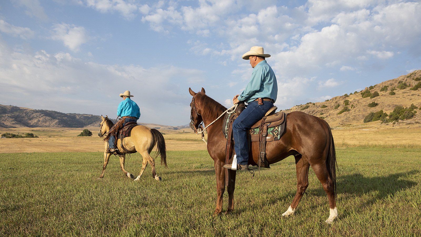 Ken McNabb redirects herd bound horse