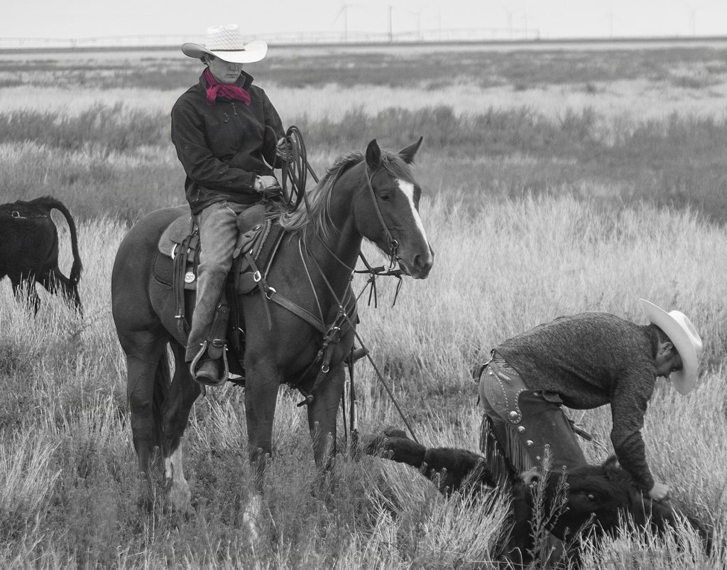 Wild rags are a functional part of a cowboy's attire