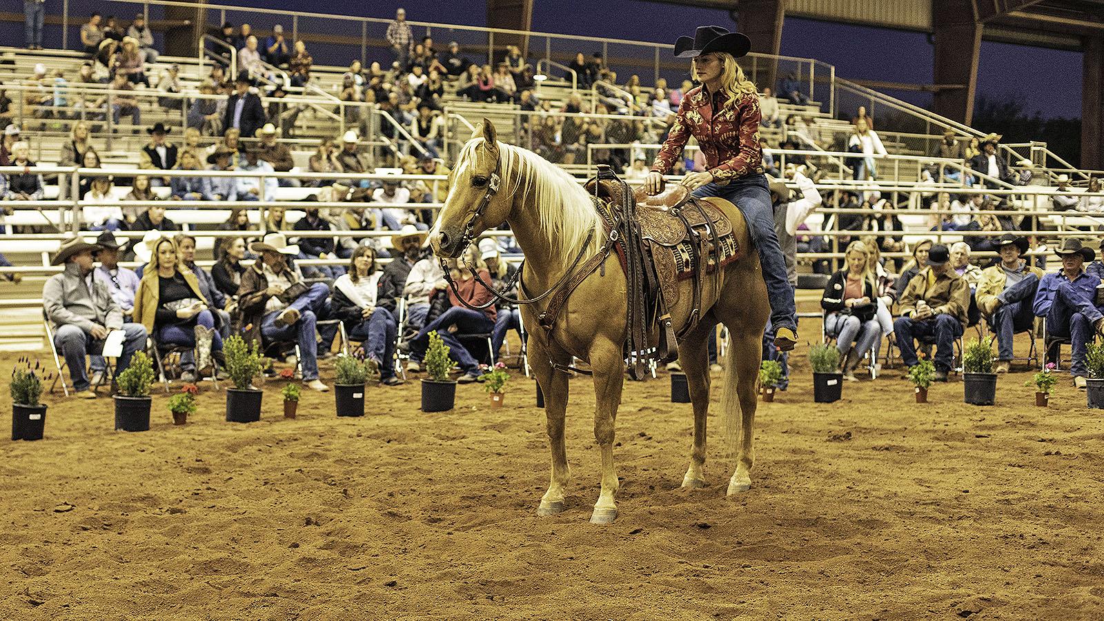 Sarah McKibben shows off her sale horse
