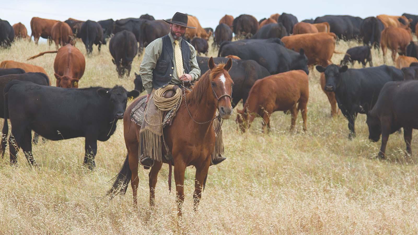 Jeffrey Mundell works cattle