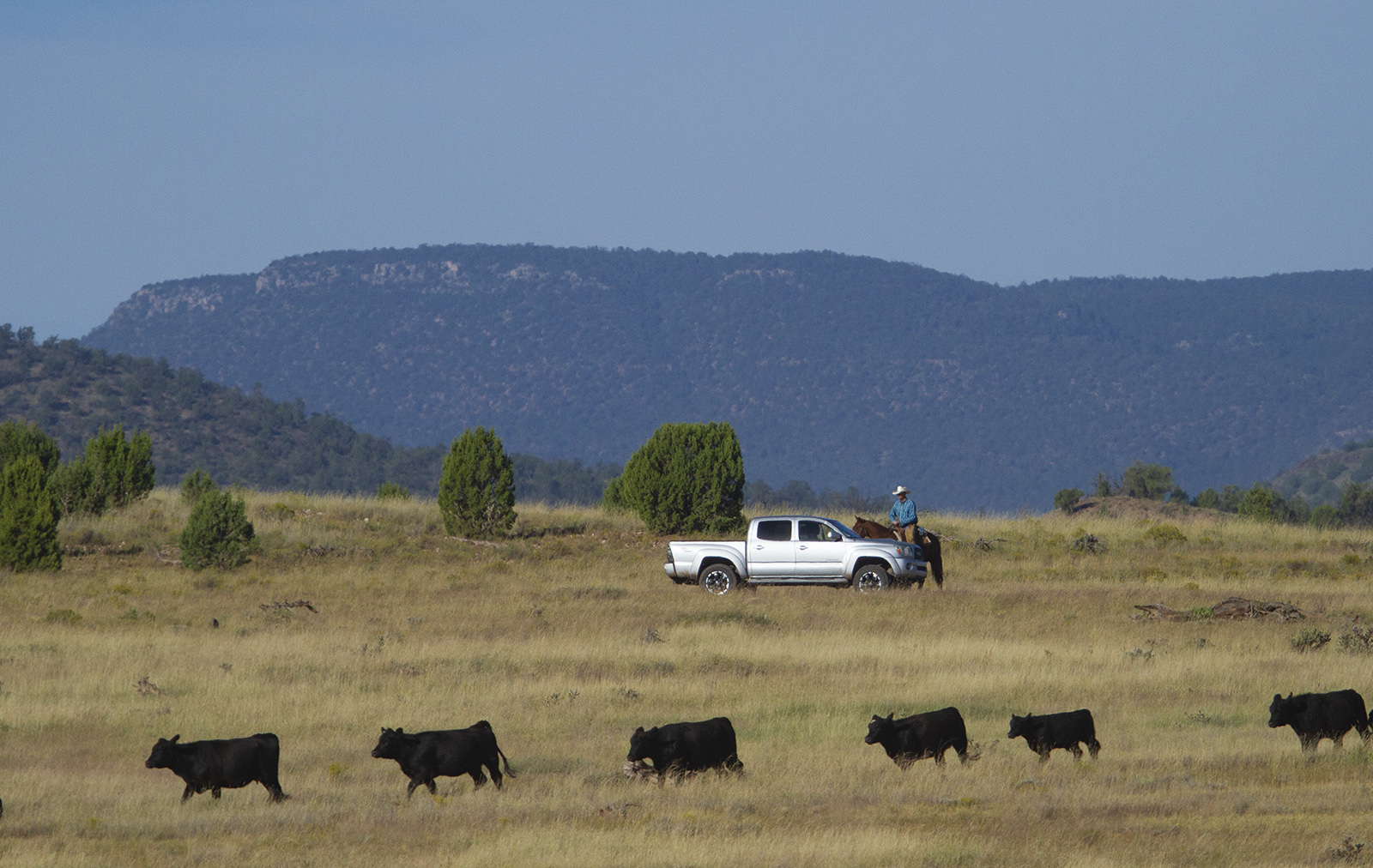 People stop and ask ranchers questions.