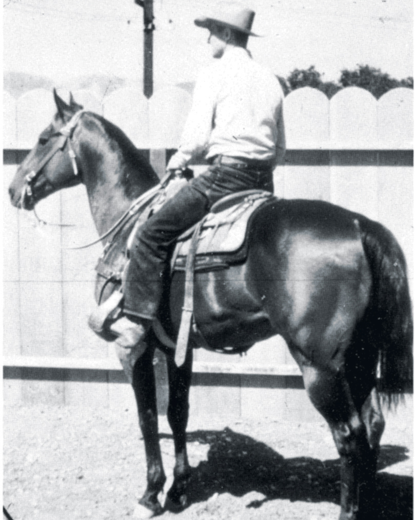 Number six of the top ranch horse bloodlines is Driftwood.