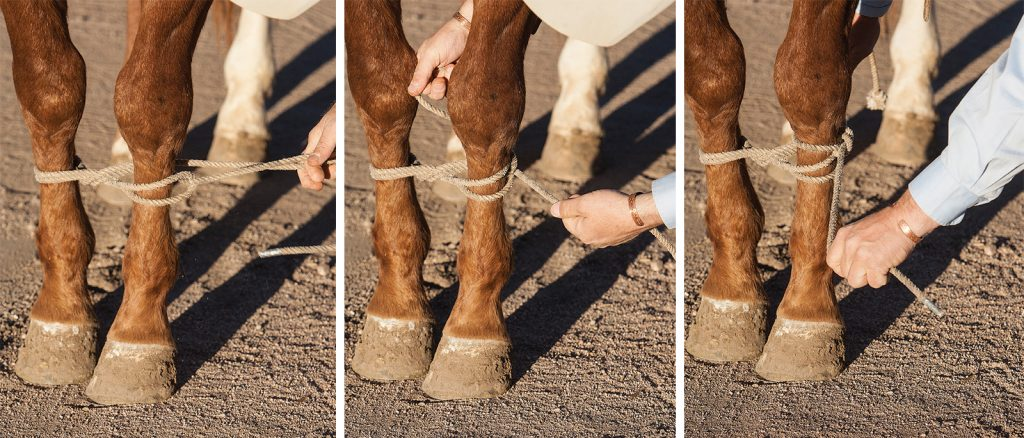 Hobbling a horse with a tie string