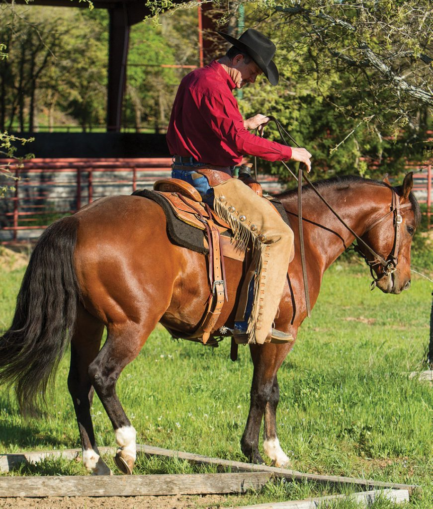 Sidepassing over obstacles teaches a horse to pick up their feet.
