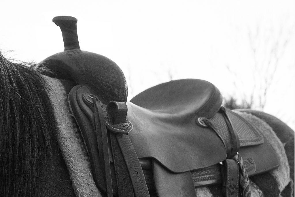Swell fork saddle