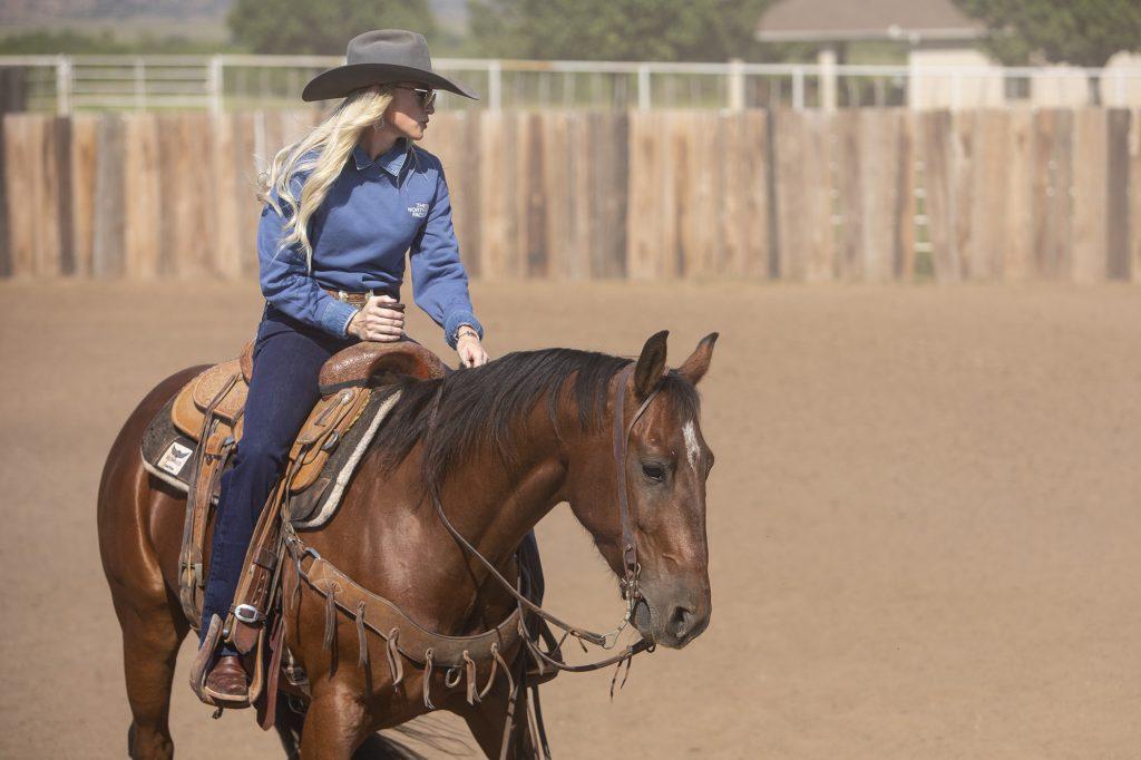 Hard Rey was one of Western Horseman's horse models
