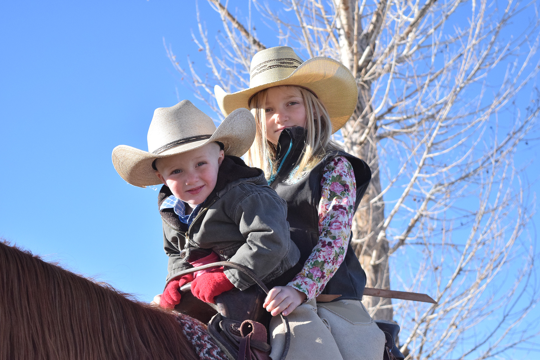 Young cowgirl, Grace Young rides on the ranch